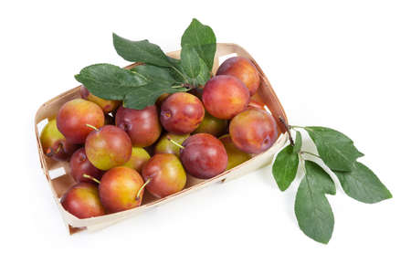Fresh ripe plums with twigs of plum tree with leaves in small wooden basket on a white background, top view