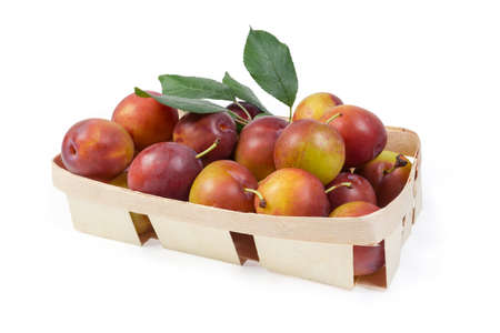 Fresh ripe plums with twigs of plum tree with leaves in small wooden basket on a white background
