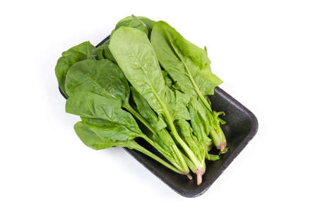 Stems with leaves of the fresh young spinach on the dark colored foam food container on a white background Фото со стока