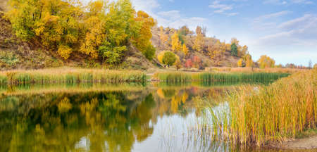 Small scenic lake with shores overgrown with reedmace at the foot of the hill in autumn day, panoramic view
