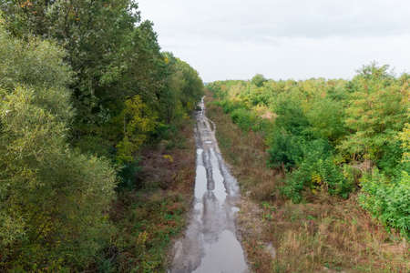 Dirt road with bare earth surface and covered with mud and puddles in the deciduous forest after rain, top view