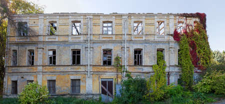 Facade of the abandoned building with wild climbing plants with bright varicolored autumn leaves, curling on the its walls, panoramic view