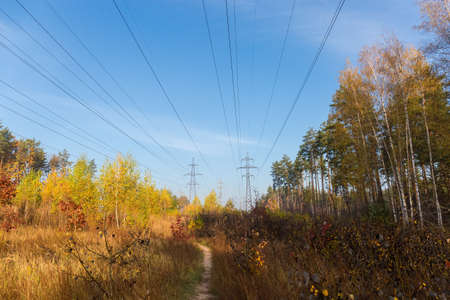 Several overhead power lines equipped with steel lattice transmission towers among the autumn forest against sky 版權商用圖片
