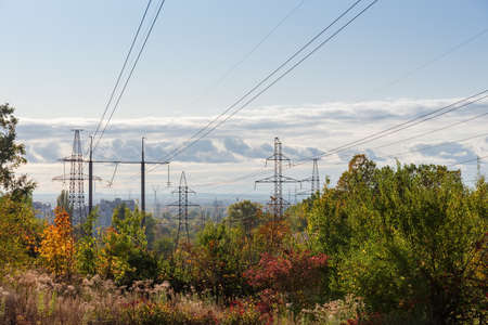 Several overhead power lines equipped with transmission towers of various designs over the trees and other vegetation against sky in autumn