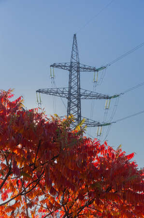 Steel lattice tower of overhead power lines with tree with autumn red leaves on a foreground against clear sky
