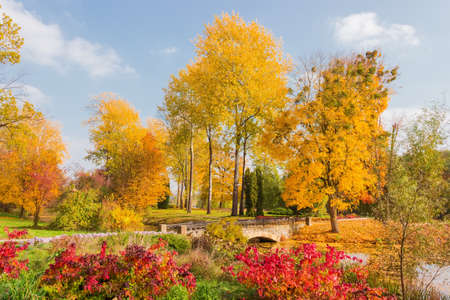 Fragment of the autumn park with old aspens and other different deciduous and conifers trees and docorative bridge over a small canal  Stock fotó