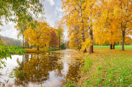 Scenic long narrow lake with different trees on the both shores in autumn park