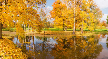 Different deciduous old trees on the both shores of the scenic lake in autumn park  Stock fotó