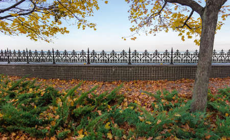Stone fence with decorative cast metal top in autumn park with juniper shrubs and maples on a foreground against the sky and reservoir