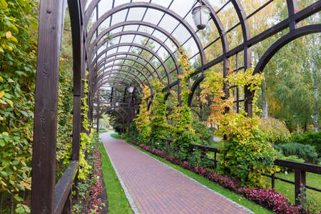 Wooden pergola with arched top separately standing in autumn park