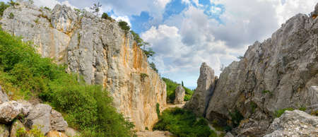 Narrow gorge in the cracked textured limestone rocks on a forested mountain slope, panoramic view