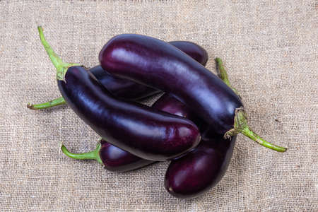 Small pile of raw harvested purple eggplants on the burlap, top view Standard-Bild