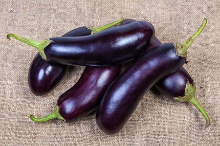 Small pile of raw ripe harvested purple eggplants on the burlap