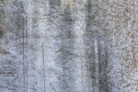 Fragment of the old rough concrete wall slightly covered with small lichen in the shadow. Texture, background