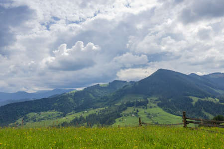 Distant mountain ranges partly covered with forests and fenced hayfield on a foreground against of cloudy sky in the Carpathian Mountains