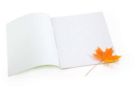 School exercise book with sheets of blank squared paper open on the first page and autumn yellowed maple leaf on a white background