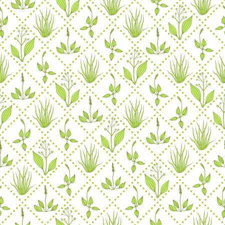 plantain herb: Seamless pattern with green grass and diagonal dashed lines on white background Illustration