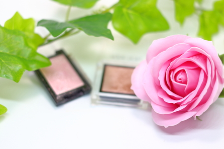 Rose and cosmetics (eye shadow) and Ivy 免版税图像