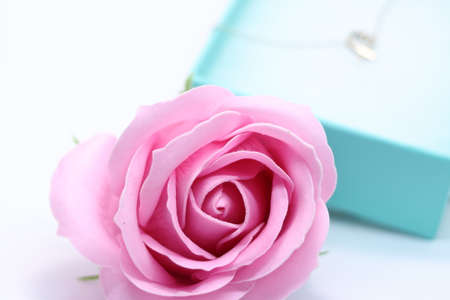 Heart necklace and pink rose in gift box Stockfoto