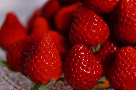 A lot of strawberries in the mountains