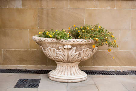 antique vase: Gypsum vase in the old antique style on the street with the yellow flowers