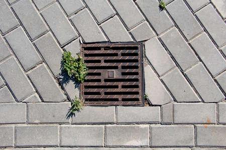 Rusty square cast iron manhole cover of storm sewer Zdjęcie Seryjne