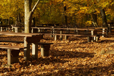 pic nic: Autumn Pic Nic Place