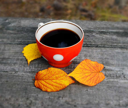 Black coffee in a red cup with white circles. It is on a rough wooden surface near three fallen leaves. A piece of blue sky reflected on the surface of the coffee. Leaves and texture of wood are poorly reflected on a cup wall.