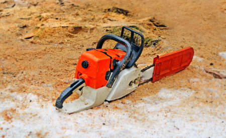 The  chainsaw on snow among sawdust near stubs from the cut trees.