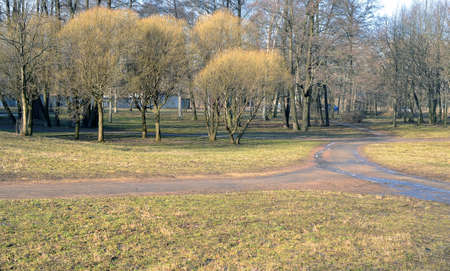 Landscape. Early spring in the gardens. snow already thawed, but trees still cost the naked.
