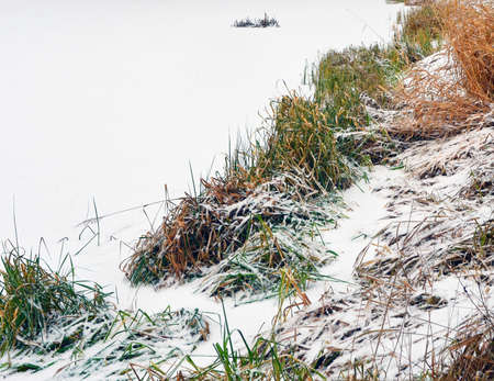 White snow lies on ice of the lake and a coastal grass. The image can be used as a background.