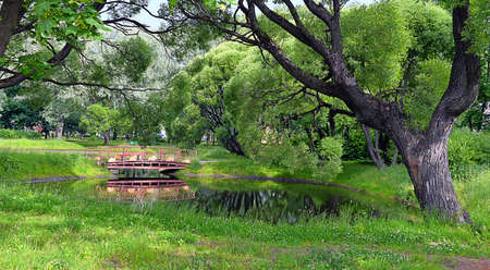 Pond in the city park, surrounded by the old willow trees, with the bridge in the summer /