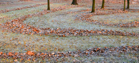 Autumn frosts in the gardens. The heaps of bright fallen leaves lit with the sun form beautiful curves on ground.