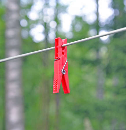 One plastic red clothespin on clothesline outdoor against of blur green trees