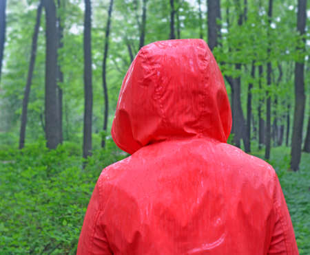 Head and nape of person wearing red waterproof raincoat with hood under pouring downpour in forest or park