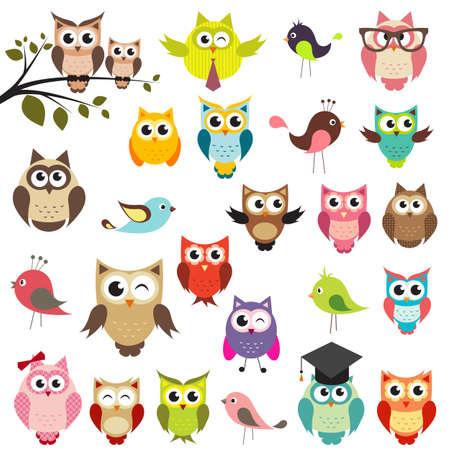 set of owls Illustration