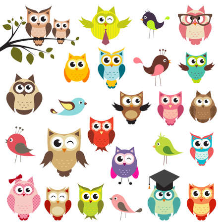 isolated animal: set of owls Illustration