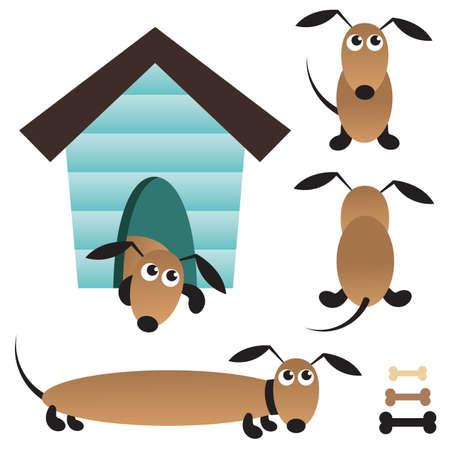 cute dog: Cute vector dog