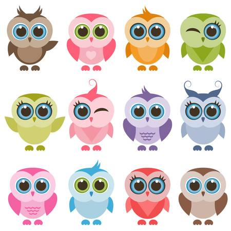 Funny colorful owls and owlets set