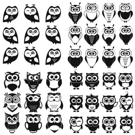 Zwarte en witte uil en owlet se