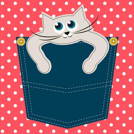 pocket: Cat in pocket