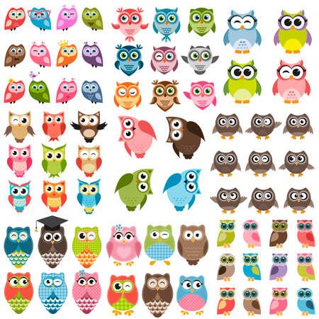 Owls and owlets set Illustration