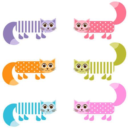 tot: cute colorful patterned cat set