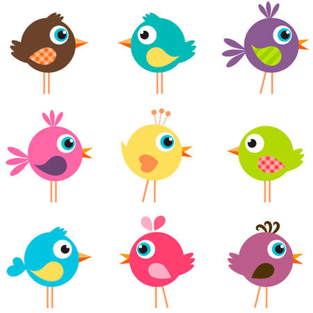 set of funny birds
