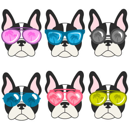 french bulldogs with sunglasses