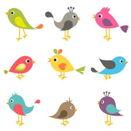 Set of colorful birds Illustration