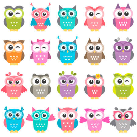 set of colorful owls isolated on white Stockfoto