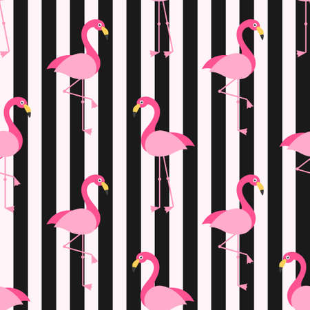 Pattern with Flamingo birds on the background with black stripes