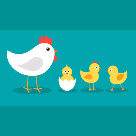 Cute cartoon chickens with white hen