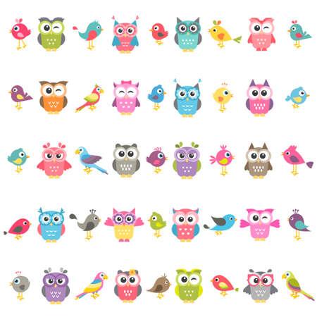 conjunto de pájaros y búhos aislado en blanco